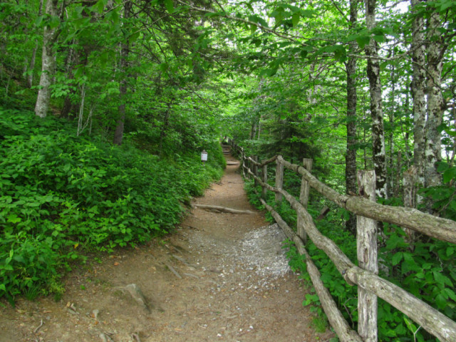Appalachian Trail Hikes Near Charlotte