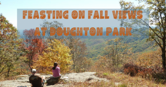 Feasting on Fall Views at Doughton Park