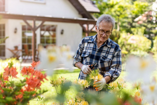Light Activities Like Gardening Are Good for Your Physical Health