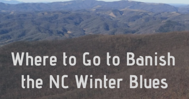 Where to go to banish NC winter blues