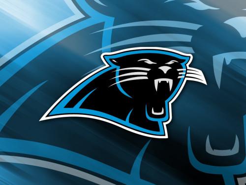 13 Significant Carolina Panthers Injuries Orthocarolina News