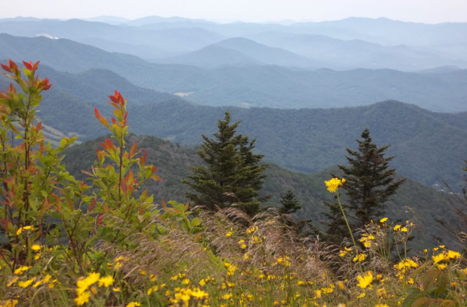 Access the Appalachian Trail close to home.
