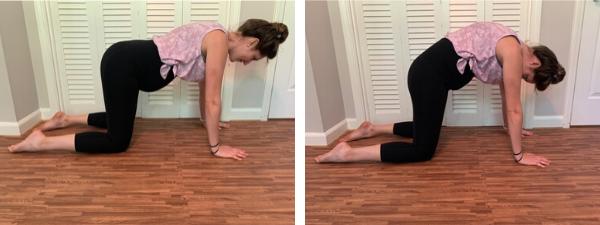 exercícios seguros para dores nas costas durante a gravidez